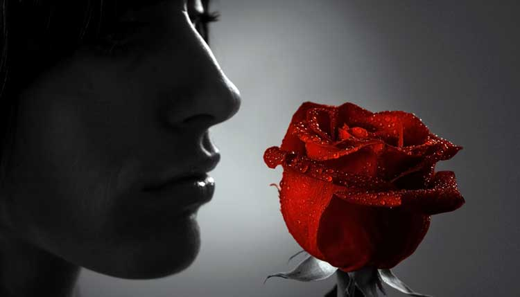 woman_lookat_rose